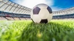 УЕФА подтвердил готовность Петербурга кприему Евро-2020