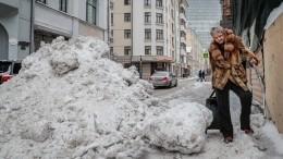 Сильный снегопад имощный ветер обрушились наМоскву
