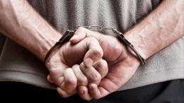 Троих мужчин задержали поподозрению вубийстве ирасчленении жителя Костромы
