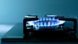 «Газпром» планирует кконцу 2025 года газифицировать 24 региона на100%