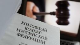 Верховный суд внес вГосдуму проект опонятии «уголовный проступок»