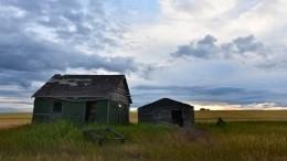 Минсельхоз предложил упростить передачу «бесхозных земель» государству