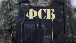 Готовивших теракты боевиков задержали наюге России