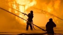 Видео: Поджог мог стать причиной мощного пожара нарынке вСамаре