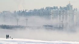 Когда лютые холода вПетербурге сменятся более теплой зимой