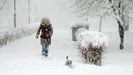 ВКерчи иКрыму из-за снегопада вводится режим ЧС