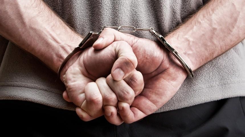 Подозреваемый вгосизмене гражданин РФарестован вМоскве