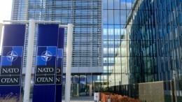 ВГосдуме назвали желание ослабить НАТО естественным