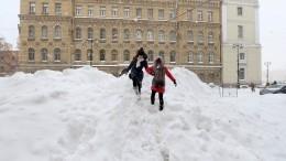 Заподарками— налыжах: к23февраля слой снега вПетербурге увеличится в2,5 раза