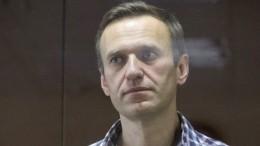 «Как слону дробина»: адвокат оценил приговор Навальному поделу оклевете