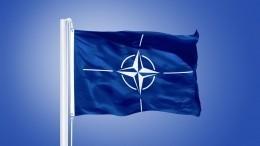 Военный аналитик рассказал ослабых местах НАТО вслучае войны сРоссией