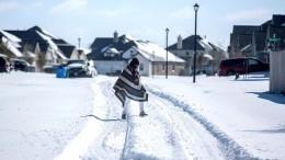 Жители США подозревают власти ворганизации снегопадов вТехасе— видео