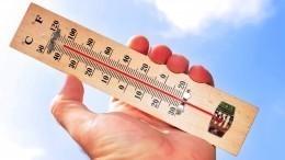 «Температурные качели»: главный синоптик Петербурга опогоде вконце февраля