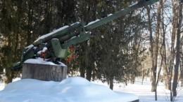 Латвийский депутат поддержал осквернение мемориала советским войнам-освободителям