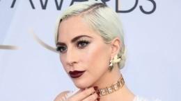 Под дулом пистолета: Леди Гага предложила похитителям своих собак 500 тысяч долларов