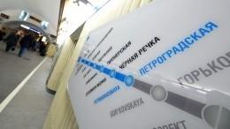 ИзПарголово вПулково заполчаса: новая схема развития метро Петербурга
