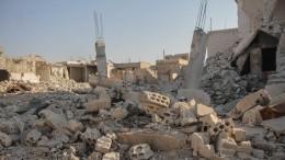 ВСовфеде жестко осудили удар США поСирии