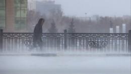 Как россияне справлялись саномальными снегопадами и«температурными качелями»?