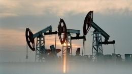 Дональд Трамп предрек США зависимость отроссийской нефти
