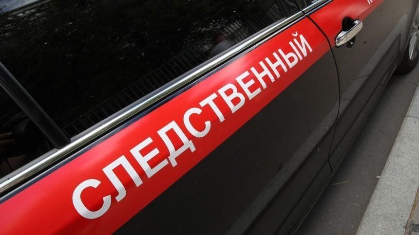 СКначал проверку после жалобы навоспитателей вдетсаду вМоскве