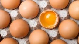 Производители мяса птицы ияиц договорились осдерживании роста цен