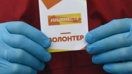 Волонтеры Ленобласти добрым делом отметили годовщину акции «МыВместе»