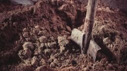 Житель Ленобласти закопал тело жены впарнике рядом сдомом