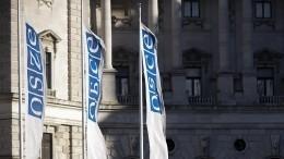 Делегация Украины попыталась «удалить» крымчан сонлайн-совещания ОБСЕ