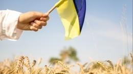 Полная деградация: Украина может лишиться главного национального достояния