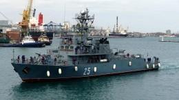 Новая демонстрация: Впорт Одессы вошли корабли НАТО