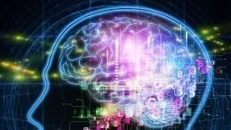 Стали известны главные факторы старения мозга
