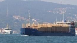 Шедший изРостова-на-Дону сухогруз затонул уберегов Румынии, двое погибли