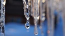 «Потепление неизбежно»: вГидрометцентре рассказали ориске исчезновения зимы