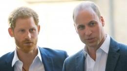 Сыновья принцессы Дианы встретятся наоткрытии памятника матери