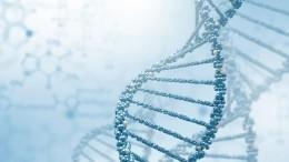 Американец сдал тест ДНК иобрел 30 братьев исестер