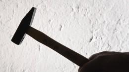 «Похоже, шизофрения»: мать опарне, подозреваемом вжестоком убийстве молотком