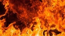 Жительница Курской области заживо сожгла восьмилетнего сына