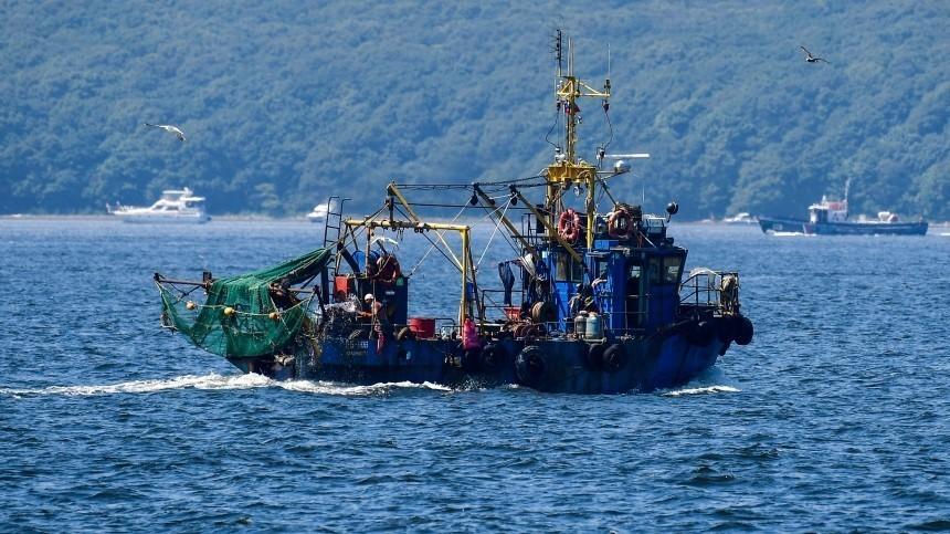 ВРосрыболовстве опровергли информацию оподорожании сардин иваси
