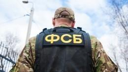 ФСБ: ВГеленджике иЯрославле задержали 14 участников украинского радикального сообщества