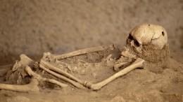 Сенсационное захоронение: археологи изучают останки красноярского чиновника XIX века