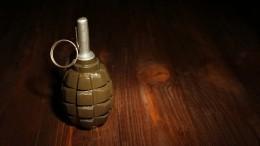 Муляж гранаты обнаружили натерритории школы вМоскве