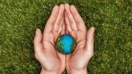 Школьникам расскажут вовремя «Большой перемены», как защитить природу