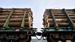 Поезда суглем илесом изРоссии создали затор награнице сКитаем