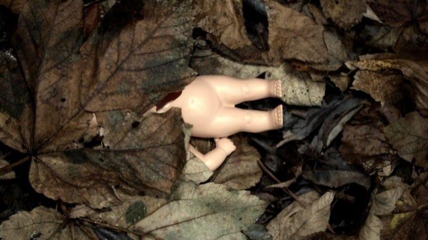 Видео: уголовное дело возбуждено после обнаружения сожженного младенца вБрянске