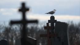 Крах загробного примирения: суд постановил выкопать россиянина измогилы тещи