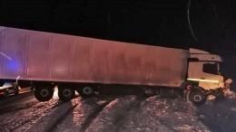 Фото: КАМАЗ разорвал начасти Renault влобовом столкновении под Новосибирском