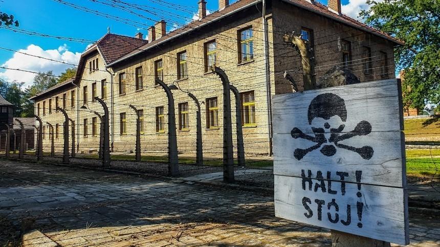 Вотношении отрицавшего холокост профессора СПбГЭУ возбудили уголовное дело