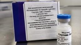 Гинцбург перечислил главные преимущества вакцины «Спутник Лайт»