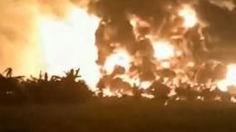 Крики ипаника: жуткие кадры мощного взрыва наНПЗ вИндонезии— видео