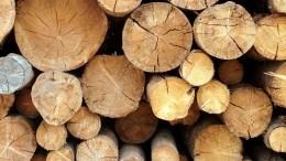 Чем деревянный дом лучше кирпичного— объясняет плотник изЧухломы